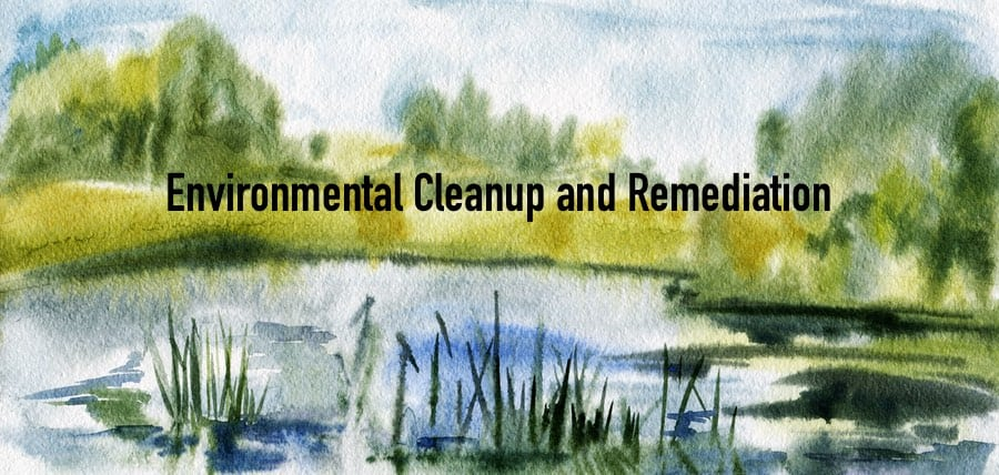 Environmental Cleanup and Remediation Services