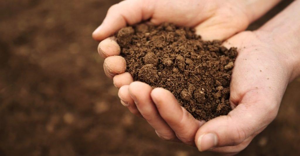 Soil Testing Inspection
